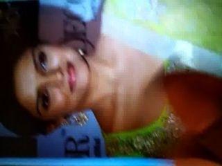 Cum Tribute On Desi Indian Bollywood Actress Asin